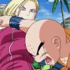 Krillin and Android 18 in